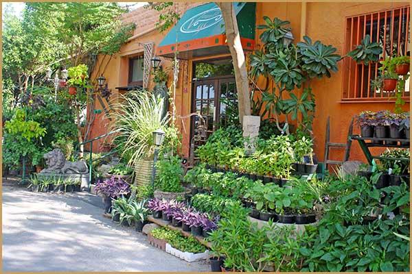 Veranda Restaurant and Café Adliya | Veranda Bahrain
